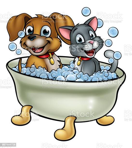 Cartoon cat and dog washing in bath vector id897444726?b=1&k=6&m=897444726&s=612x612&h=1j5fzn8k3kpmz87guamaz6ss0ehjvvk9mjwwz2awic4=