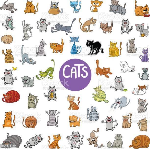 Cartoon cat characters big set vector id804313110?b=1&k=6&m=804313110&s=612x612&h=tv7ora jjnn13zxx40m2ooiwzi wxarcezc4gevgrug=