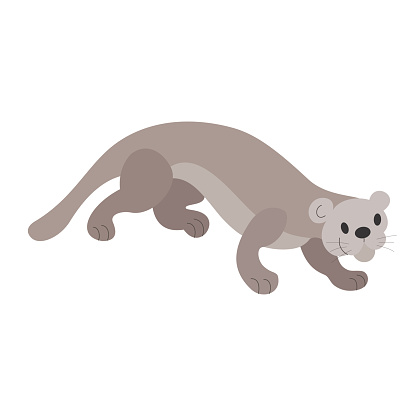 Cartoon cat otter on the hunt. Wildlife, exotic fauna, river dweller. Happy animal, cute character, baby. Hand-drawn vector. For children illustrations, print, the Internet.