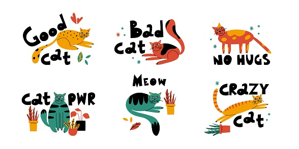 Cartoon cat set. Hand drawn funny pet and lettering, yellow playful good kitten, domestic animals, sticker collection. Card, t-shirt or poster design, vector isolated illustration