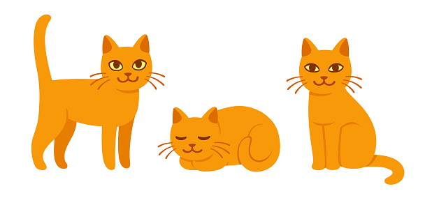 Cartoon cat set