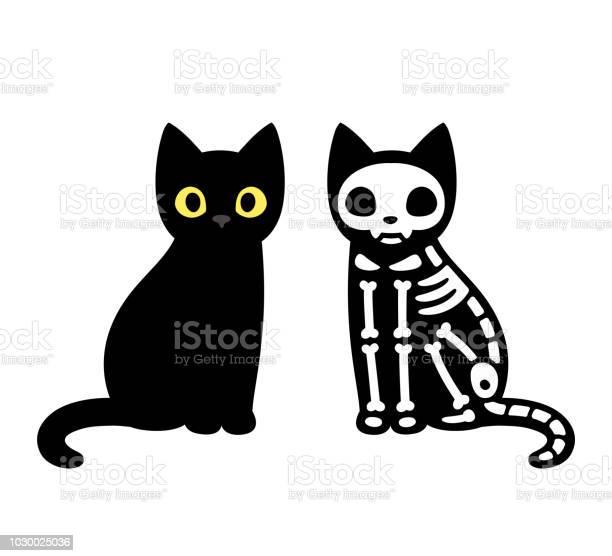 Cartoon cat skeleton vector id1030025036?b=1&k=6&m=1030025036&s=612x612&h=c0gmkbvvoepyv u kvwlf2u0ud6zmt5anjyfguxsz4c=
