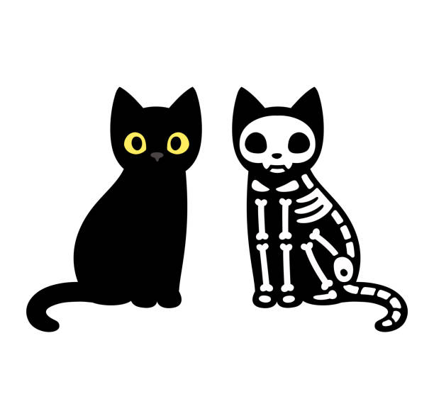 Cartoon cat skeleton vector art illustration