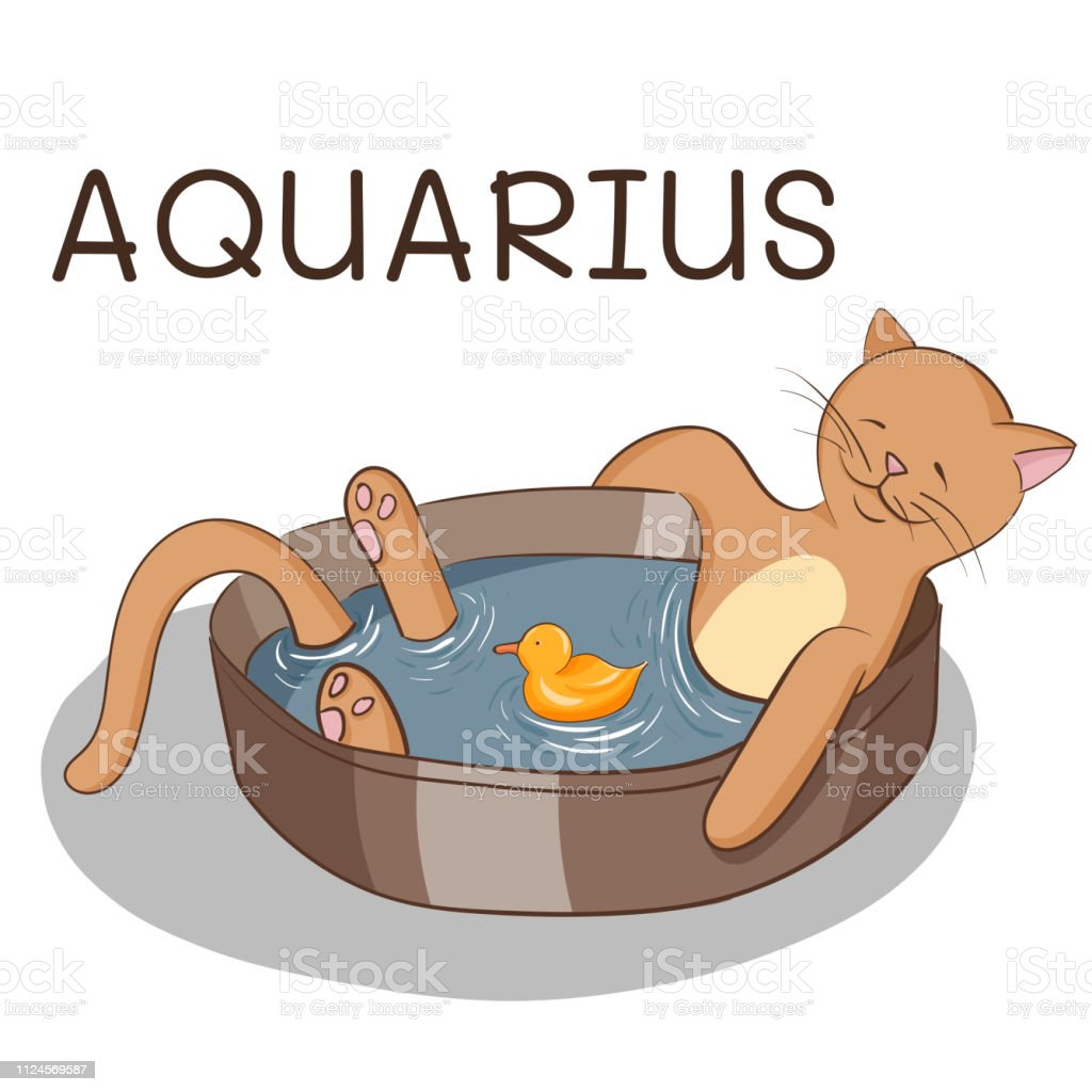 Cartoon Cat Taking Bath Cat With Rubber Duck Cat Stylized As