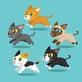 Cartoon cats running