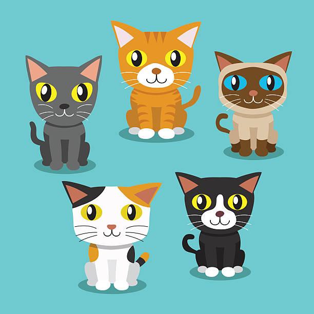 カットイラスト、猫、独立した - 子猫点のイラスト素材/クリップアート素材/マンガ素材/アイコン素材