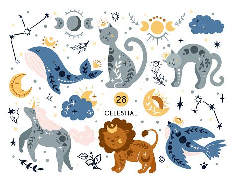 Cartoon celestial animals and bird isolated kids clipart