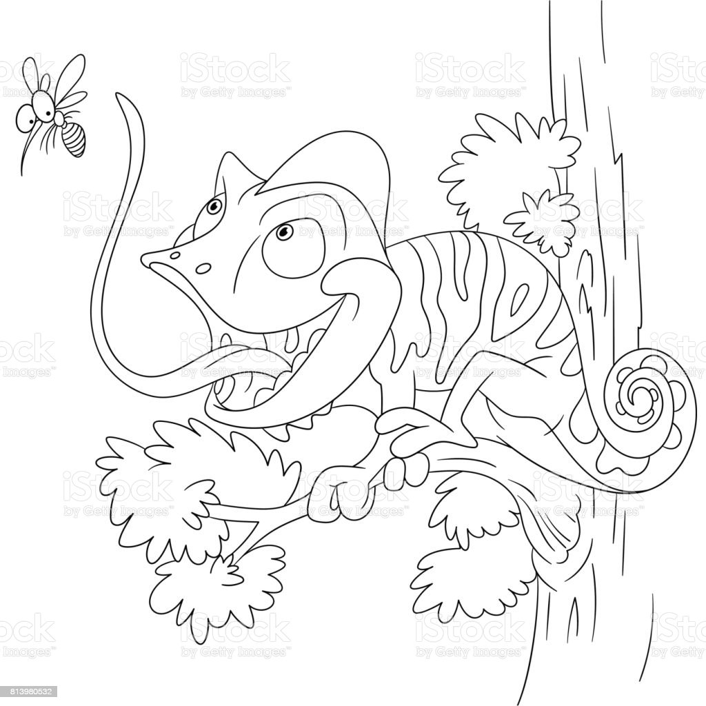 Cartoon Chameleon Coloring Page Stock Vector Art & More Images of ...