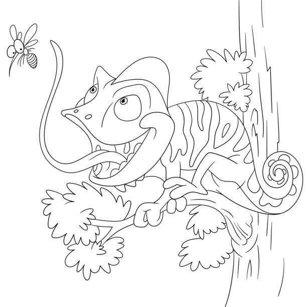 cartoon chameleon coloring page - amphibians stock illustrations
