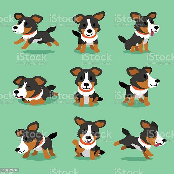 Cartoon character american shepherd dog poses vector id516659740?b=1&k=6&m=516659740&s=612x612&h=z2f3jcvakbrwq4fkdzljeqvkz3u5ehc5jkf3p3 umxw=