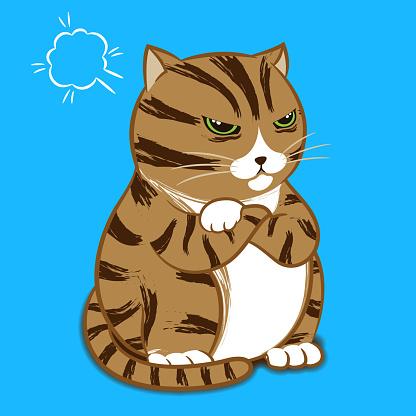 Cartoon Character - Angry Cat