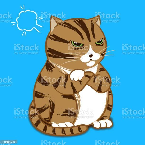 Cartoon character angry cat vector id1166542451?b=1&k=6&m=1166542451&s=612x612&h=kw52000rjirkzwukl4heiia12dtgak ik0mezg1hbgm=