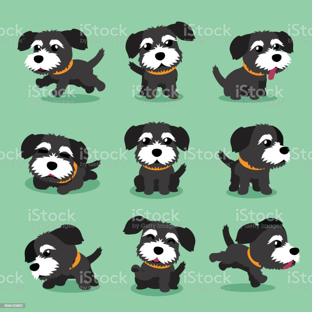 Cartoon character black norfolk terrier dog poses векторная иллюстрация