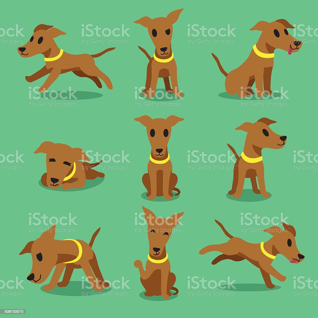 Cartoon character brown greyhound dog poses vector art illustration