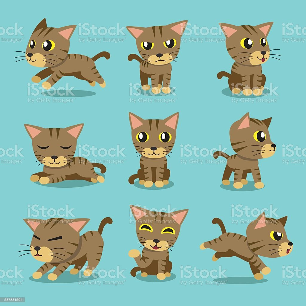 Cartoon character brown tabby cat poses vector art illustration