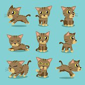 Cartoon character brown tabby cat poses