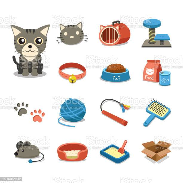 Cartoon character cat and accessories set vector id1010064642?b=1&k=6&m=1010064642&s=612x612&h=on9dafmqz1cozivkxgiact3qvpzqu9al2tx3grfwkv0=