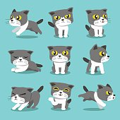 Cartoon character cat poses set