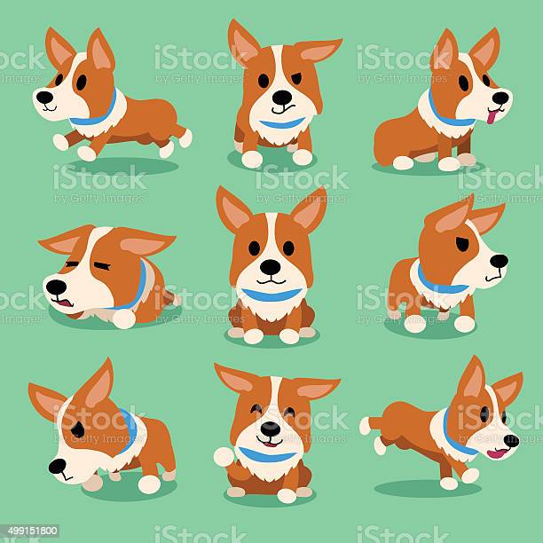 Cartoon character corgi dog poses vector id499151800?b=1&k=6&m=499151800&s=612x612&h=7qwi 0zzjb8qcwvz2zzpf5977wy60fnwuhjjgppz8c0=