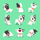 Cartoon character cute french bulldog poses for design.