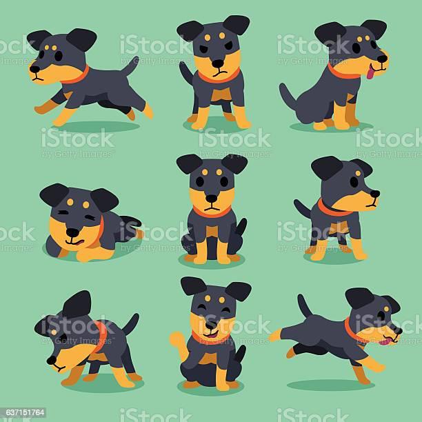 Cartoon character german hunting terrier dog poses vector id637151764?b=1&k=6&m=637151764&s=612x612&h=2ntqhy3rwcfhgk71q6snw01hc6bmqeewlbioqiufumm=
