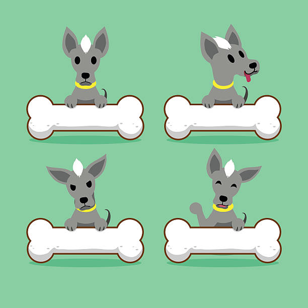 cartoon character hairless dog with big bones - post it notes stock illustrations