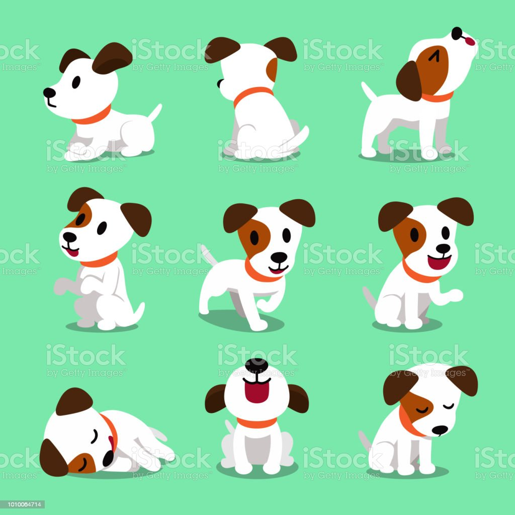 Cartoon character jack russell terrier dog poses векторная иллюстрация