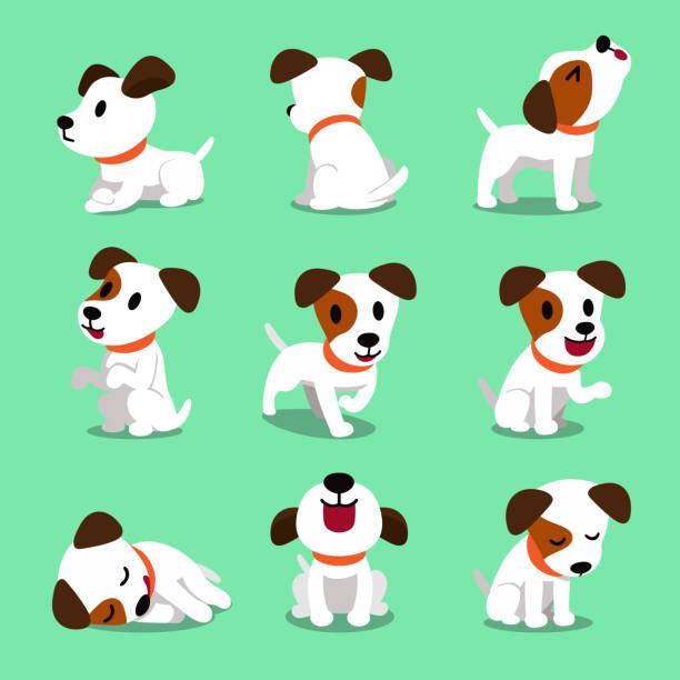 ilustrações de stock, clip art, desenhos animados e ícones de cartoon character jack russell terrier dog poses - happy dog