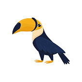 Cartoon character of toucan. Tropical bird with big brightly orange beak. Fauna theme. Colorful decorative element for promo poster of travel agency. Flat vector design isolated on white background.