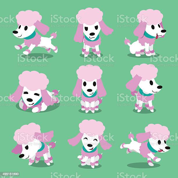 Cartoon character poodle dog poses vector id499151890?b=1&k=6&m=499151890&s=612x612&h=0qaizx3gsv9j7x3mfykkf zeq83qzc56ohft i6ohqw=