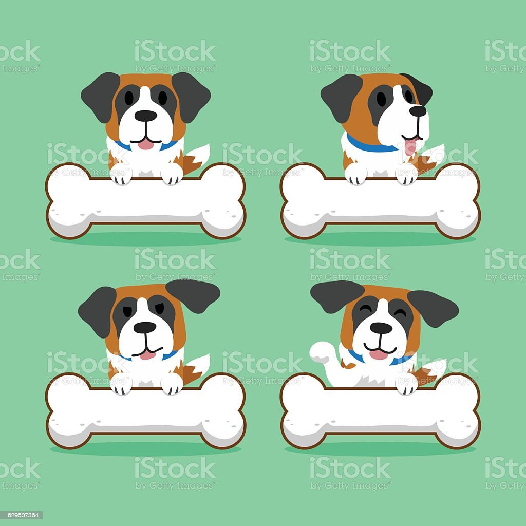 Cartoon character saint bernard dog with big bones vector art illustration
