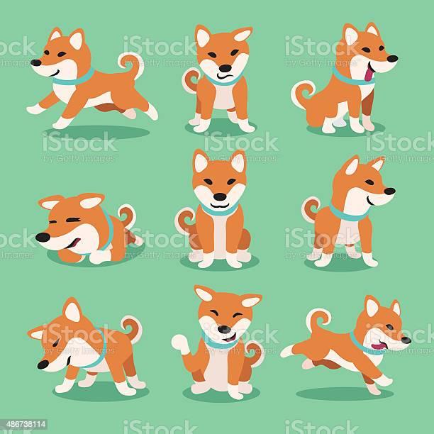 Cartoon character shiba inu dog poses vector id486738114?b=1&k=6&m=486738114&s=612x612&h=fix9mkzxfubprujn3qq30yuncnwpzalx9kxmiogvej8=