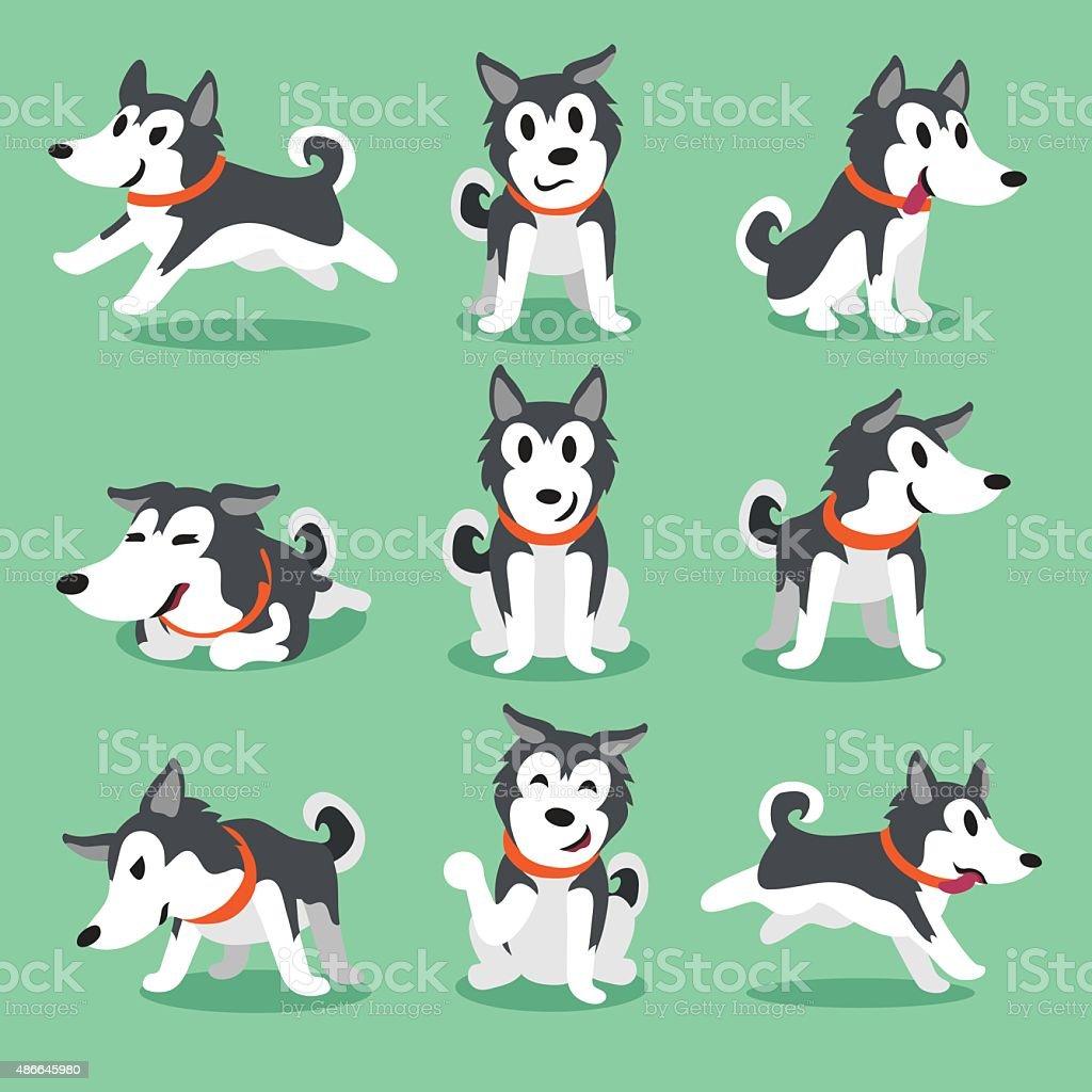 Cartoon character Siberian husky dog poses vector art illustration