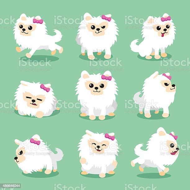 Cartoon character white pomeranian dog poses vector id486646044?b=1&k=6&m=486646044&s=612x612&h=cuvq5wbm5pwnwozqciblxi9zgte5ofnrgo82cl3hzoi=