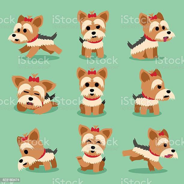 Cartoon character yorkshire terrier dog poses set vector id523183474?b=1&k=6&m=523183474&s=612x612&h=dzesfuflonivpxekll64kpliwkp6d5lxb08wctol1h0=