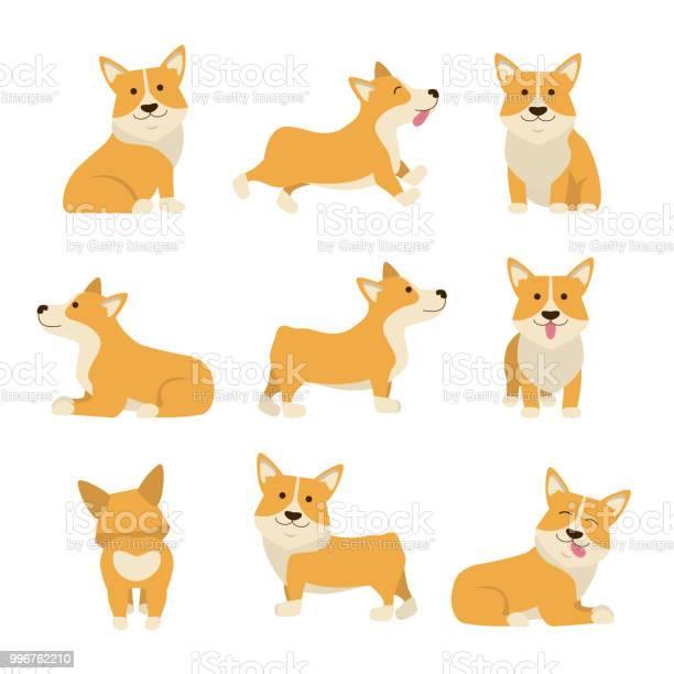Cartoon characters welsh corgi set vector vector id996762210?b=1&k=6&m=996762210&s=612x612&h=2vuw39qzyhok6dxkwsv3w2fqjnjvjynj67yulxy1ehe=