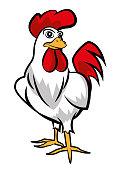 Cartoon Chicken character mascot standing straight - vector mascot