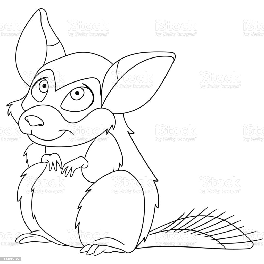 coloring pages chinchillas | Cartoon Chinchilla Coloring Page Stock Illustration ...