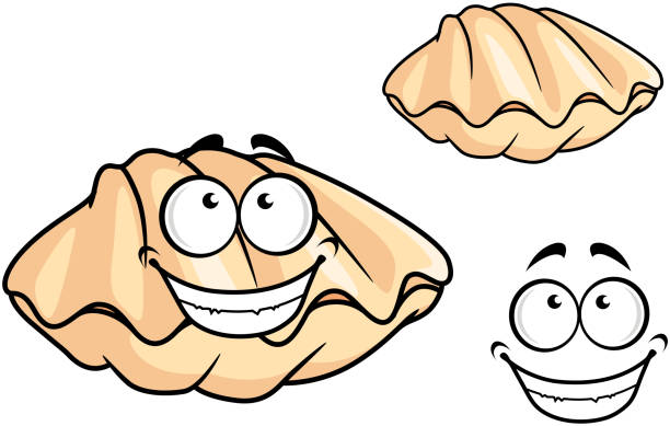 Best Clam Illustrations, Royalty-Free Vector Graphics ...
