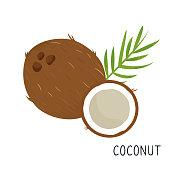 Cartoon coconut isolated on white background.