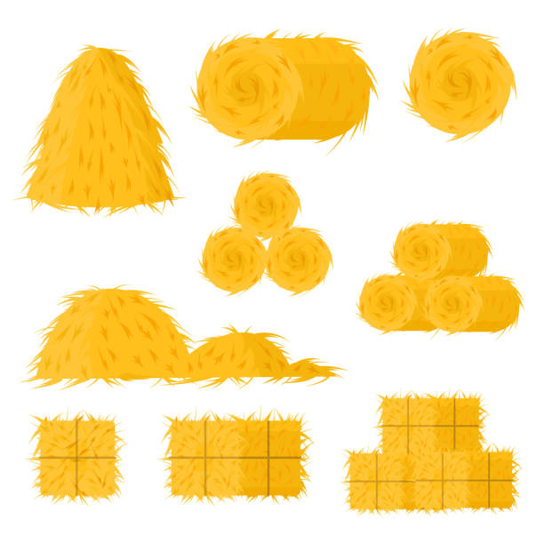 Cartoon Color Bale of Hay Icon Set. Vector Cartoon Color Bale of Hay Icon Set Include of Straw, Haystack and Hayloft. Vector illustration of Icons hay stock illustrations