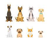 Cartoon Color Dog Breeds Icon Set Include of Doberman, Husky and Corgi. Vector illustration of Icons Sitting Pet