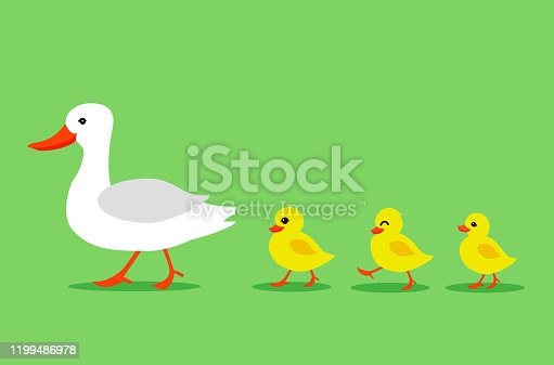 Cartoon Color Duck and Different Little Ducks Set on a Green Background. Vector illustration of Bird Mother and Baby