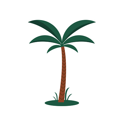 Cartoon Color Palm tree icon