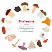 Cartoon Color Poisonous and Edible Mushrooms Banner Card Circle Include of Toadstool and Truffle Flat Design Style. Vector illustration