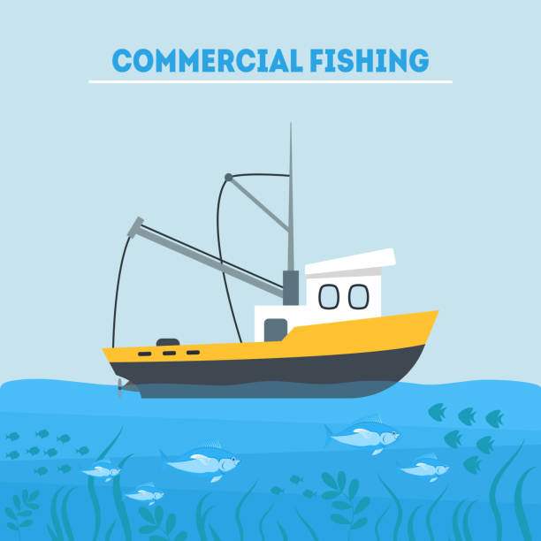 ilustrações de stock, clip art, desenhos animados e ícones de cartoon commercial fishing in sea card poster. vector - fishing boat