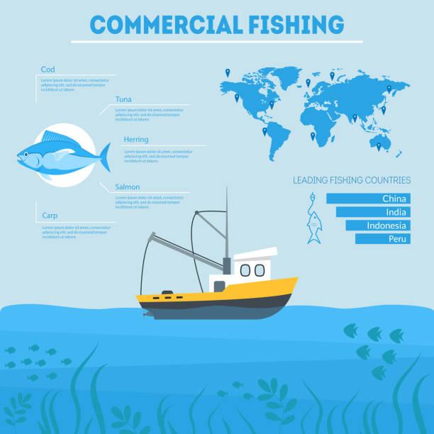 cartoon commercial fishing infographic card plakat. wektor - rybactwo stock illustrations
