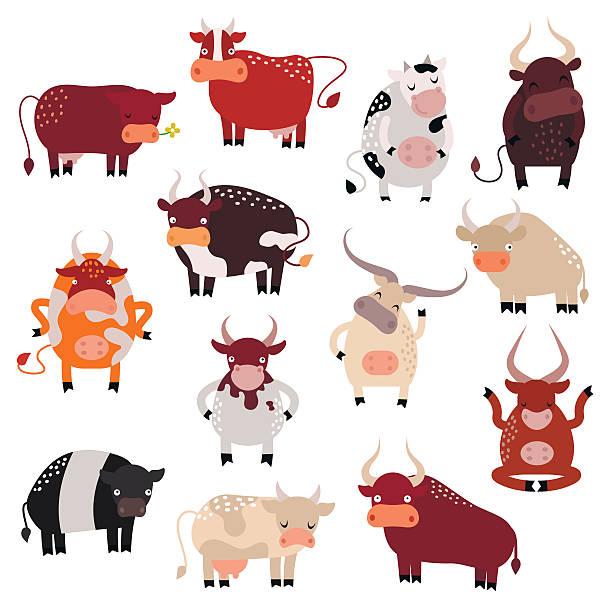 comic kuh aktion set mit niedlich schönen färse in verschiedenen - lustige kuh bilder stock-grafiken, -clipart, -cartoons und -symbole