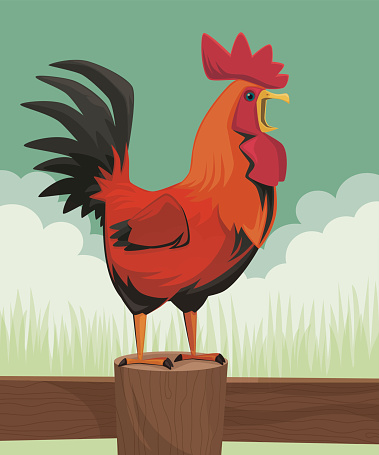 Cartoon crawling rooster standing on fence
