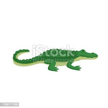 Cartoon crocodile on a white background.Flat cartoon illustration for kids.